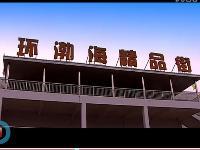 武清�h渤海�G色�r�a品交易物流中心精品街一�钦猩�