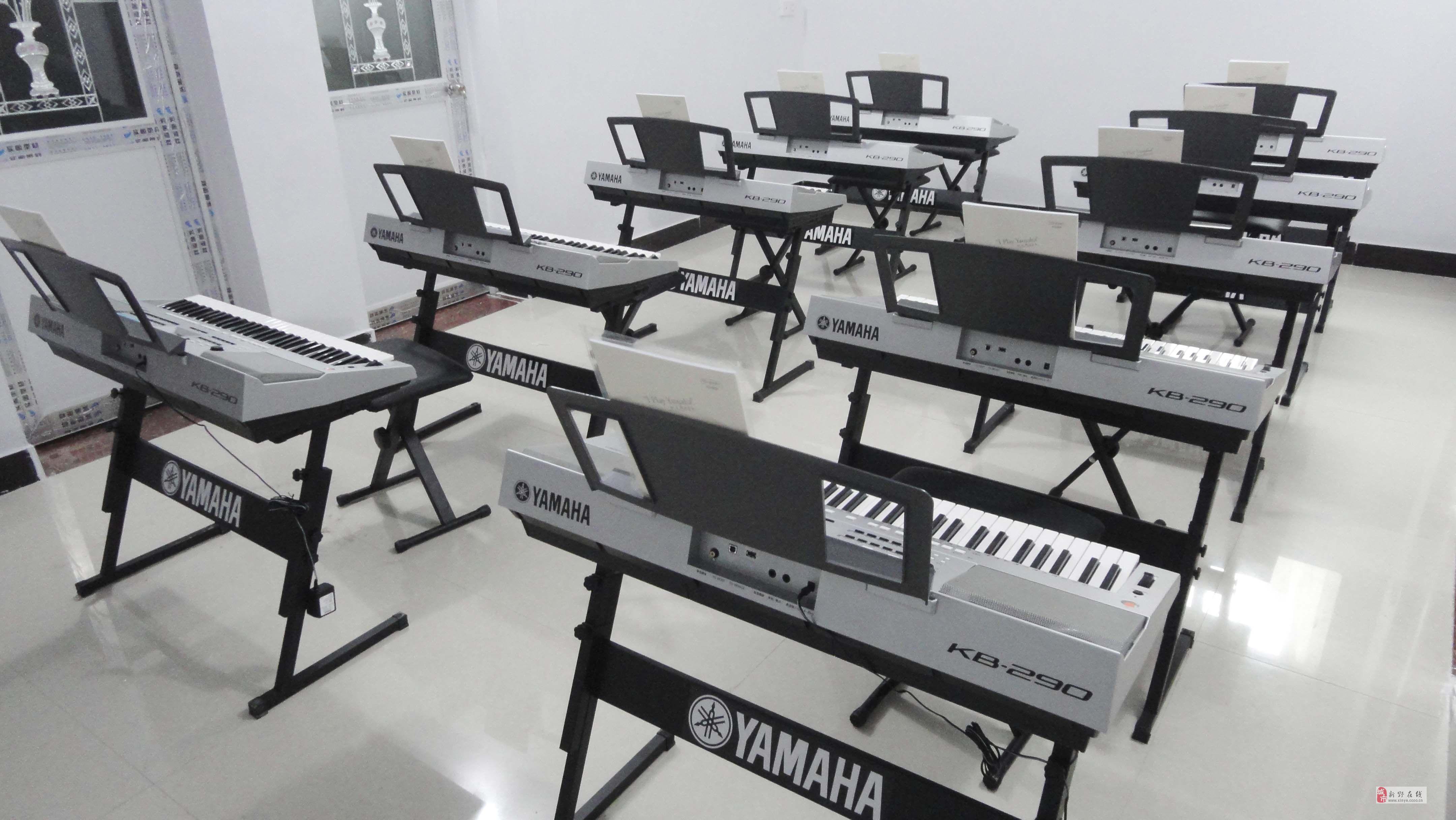新野华南钢琴电子琴专业培训中心
