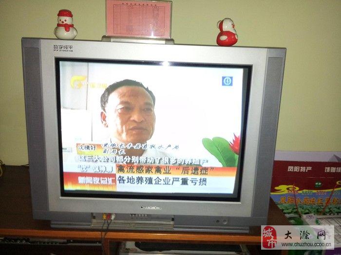 29寸长虹纯平电视_大滁网