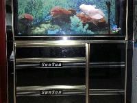 專業定做生態魚缸!