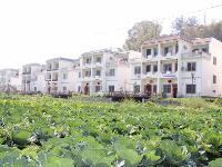 巴马长寿乡房产――坡纳旅游度假村