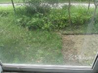 河东新区优质小区私家花园房诚售