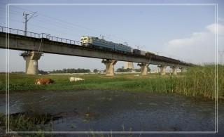 [原创]火车桥下