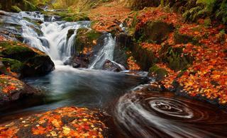 发一组瀑布的照片供大家欣赏,江山如此多娇呀![贴图]