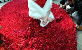 9999朵玫瑰制成的婚纱