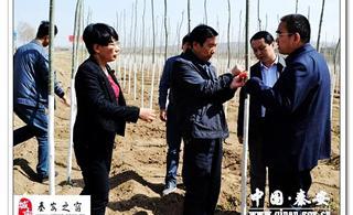 秦安县:督查百里生态文化长廊建设工作