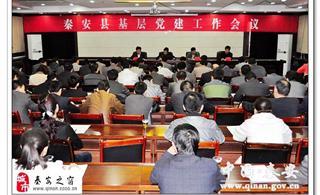 秦安县召开全县基层党建工作会议安排部署2013年各项工作