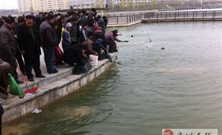 虞城木兰文化广场人工湖寺院组织放生活动