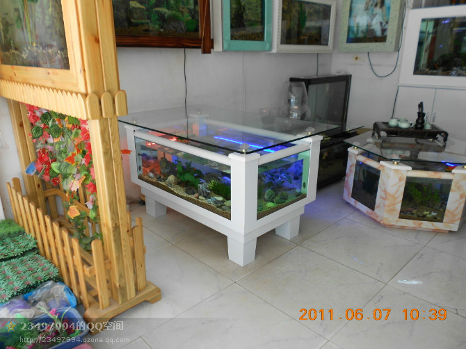 福州清洗鱼缸,景致护理、鱼草养护、鱼缸保养、鱼缸维