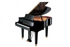 鋼琴培訓、一對一授課...讓您在學琴路上少走彎路.