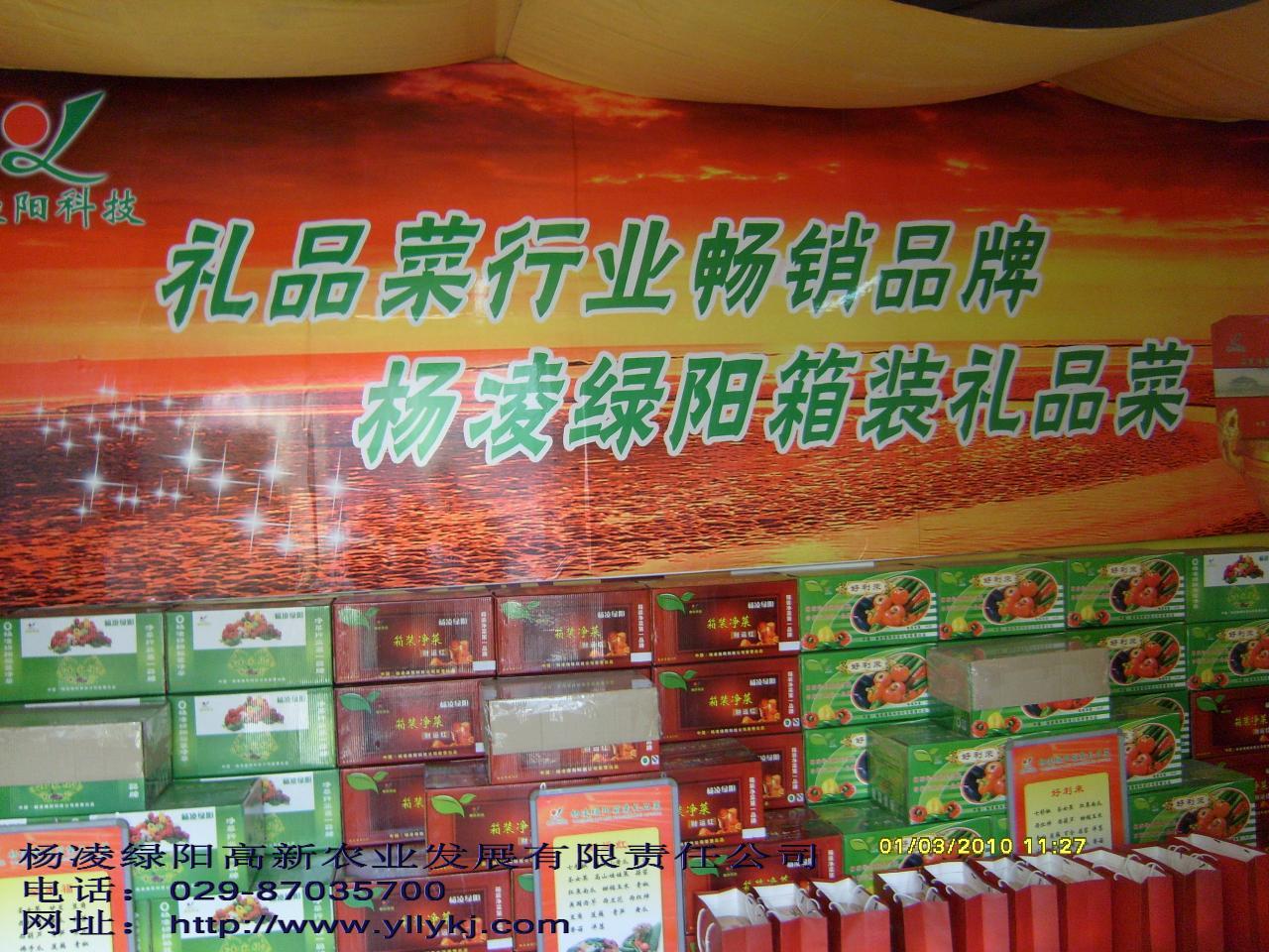 杨凌绿阳礼品菜诚聘加盟商