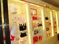 出售9.5成新的文胸柜、居家服柜子全套
