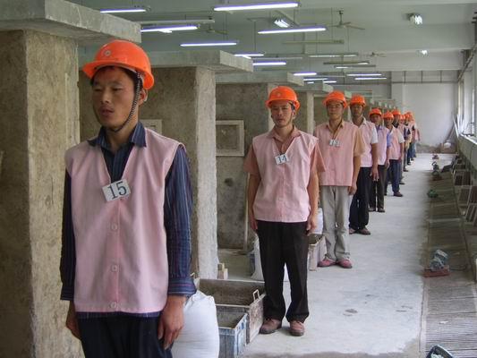 常年招新加坡建筑工人
