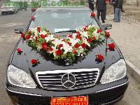 结婚车队、5-69座车(旅游、商务租车)、自驾