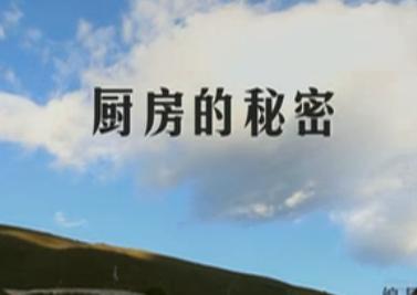 舌尖上的中国第五集――厨房的秘密