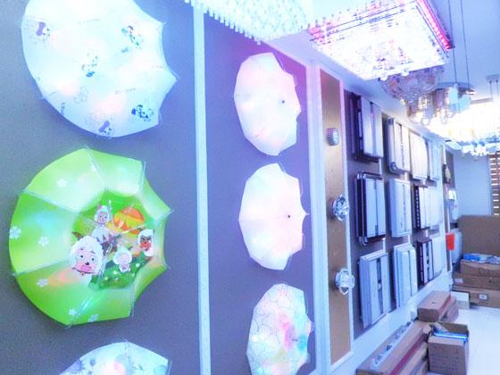 国家大型企业,中国最大的节能灯生产出口基地之一,同时阳光照明已被列