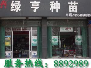 山东省金乡县绿亨农资公司