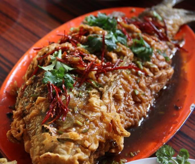 红烧鲤鱼的做法 家常美食鲤鱼的做法大全