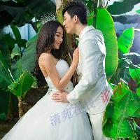 天津热带雨林之春花浪漫