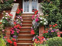 住在房里子,还是住在花丛中