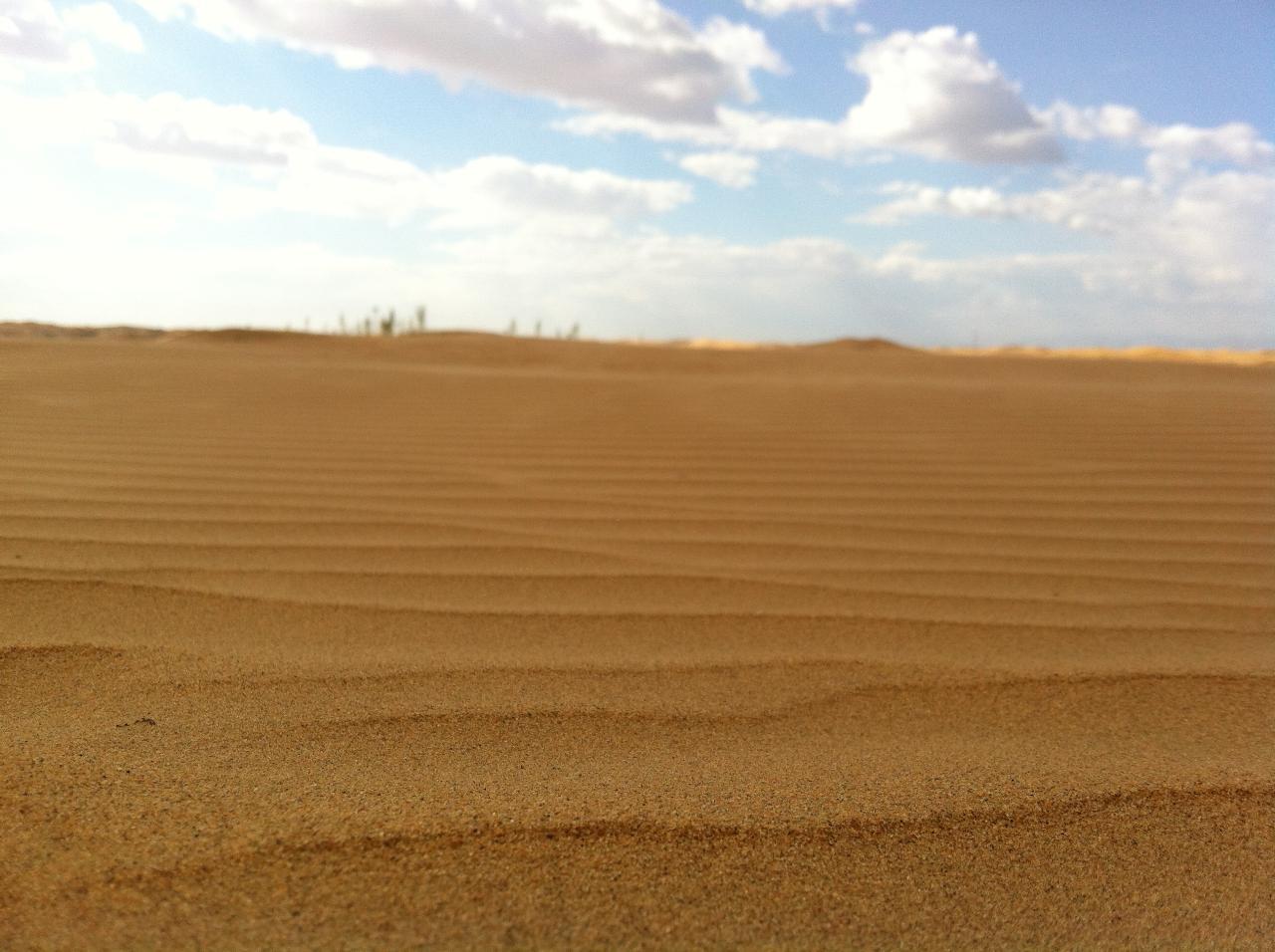 景区风采图片展示_游玩项目_银肯塔拉沙漠生态文化区