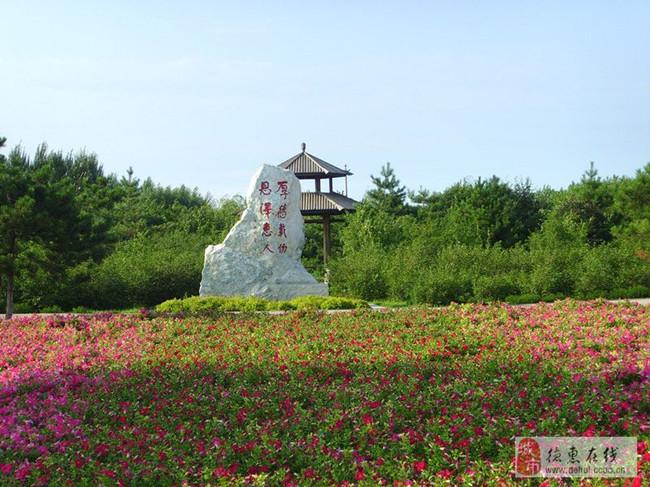0010德惠植物园美景