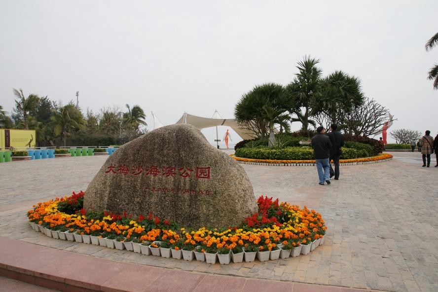 深圳莲花山公园观景
