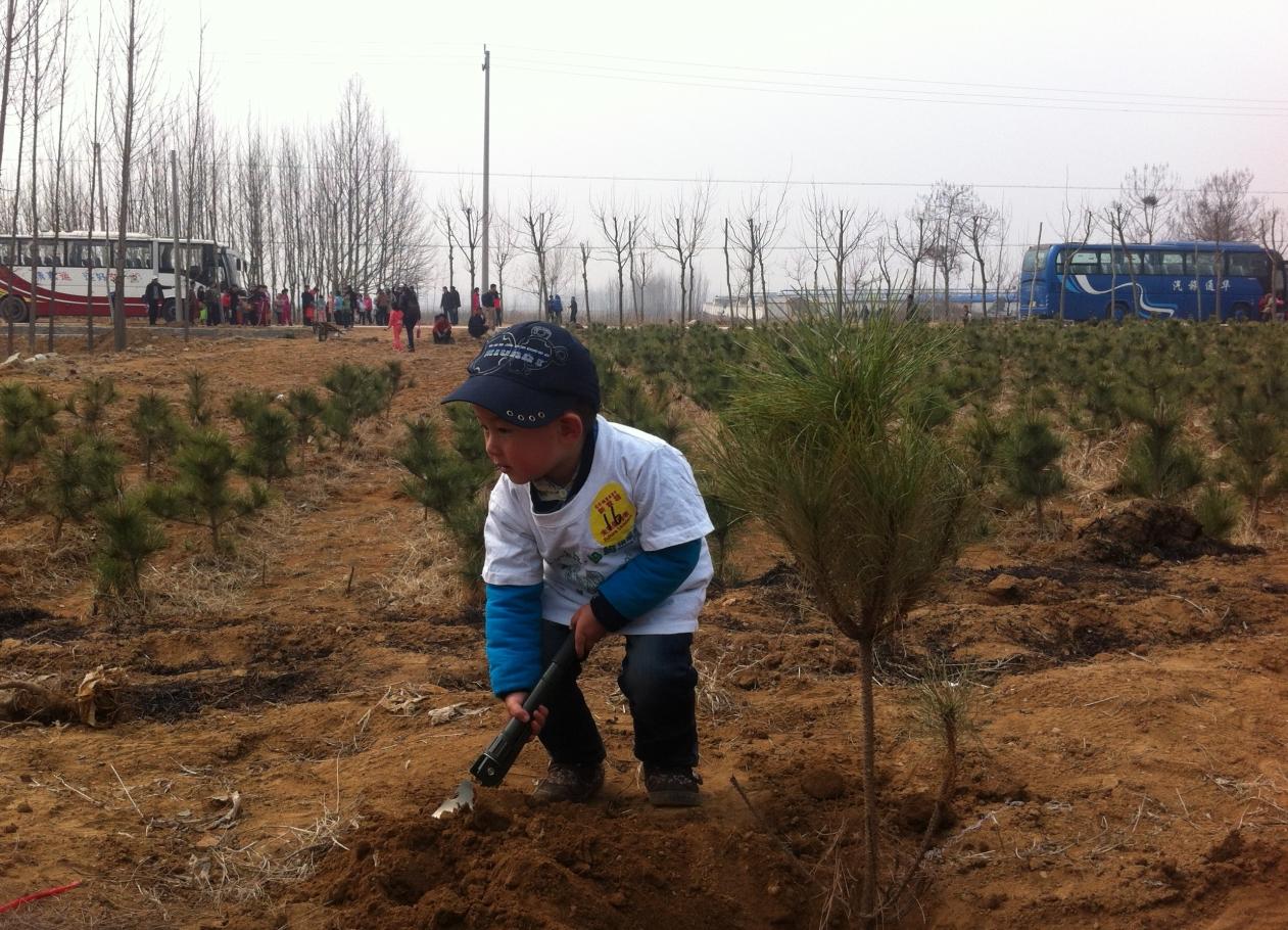 2013年植树节活动