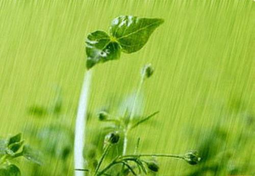 谷雨节气的由来; 描写季节与气象的优美段落; 节气养生:15度为春捂