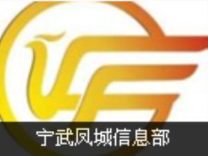凤城信息部