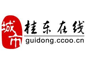 桂东艾迪网络信息科技有限责任公司
